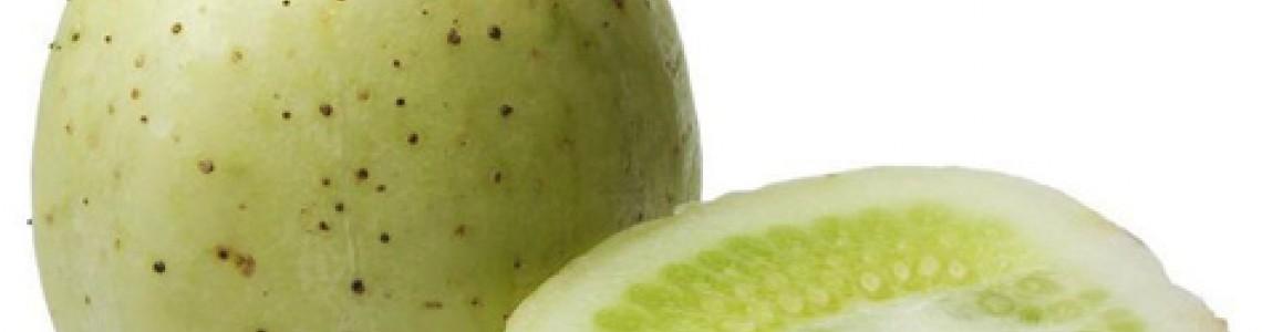 Μήλο Κρύσταλλο Οδηγίες Καλλιέργειας Σπόρων