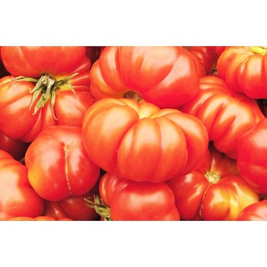 Ντομάτα Brandywine Red 20 Σπόροι