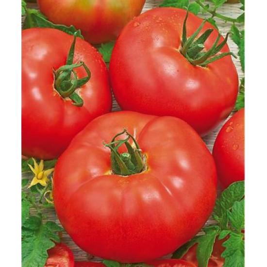Ντομάτα Montecarlo f1 - 15 Σπόροι