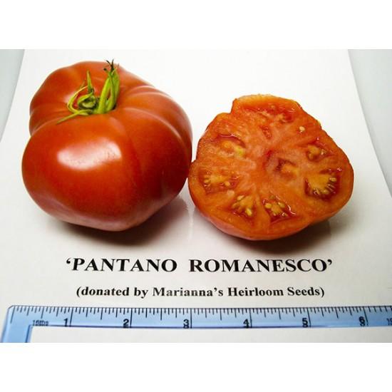 Ντοματα Pantano Romanesco Italian 20 Σπόροι